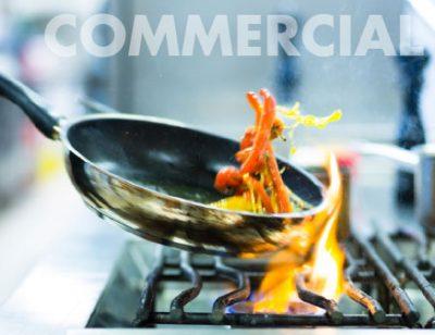 Commercial Pest Control